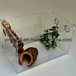 Custom Acrylic Reptile Case with SGS Certificates pictures & photos