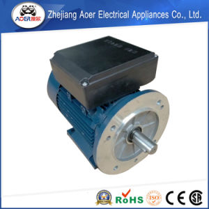 AC Single Phase 240V Low Rpm Electrical Motors pictures & photos