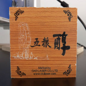 CO2 Marking Laser Machine on Plastic pictures & photos