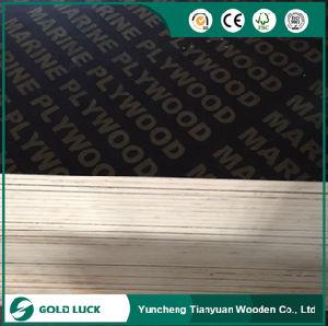 E1 Grade Phenolic Plex Construction Marine Plywood 1220X2440mm pictures & photos