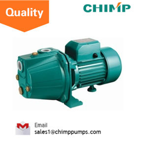 Js100 Self Priming Home Use Jet Clean Water Pump for Russia pictures & photos
