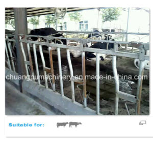 Cow Freestall Barn Galvanized Fence Panels for Dairy Cows pictures & photos