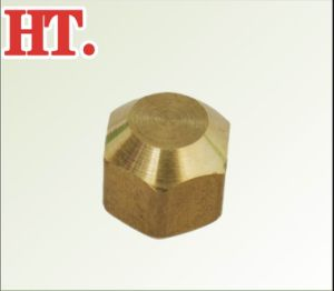Brass Flare Female Cap Fitting pictures & photos