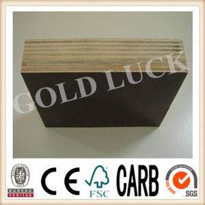 Film Faced Plywood / Shuttering Plywood / Marine Plywood in Linyi pictures & photos