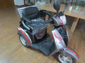 New Style Electric Three Wheel Bike with CE (LDLS-E130) pictures & photos
