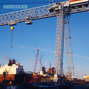 20 Ton Remote Control Single Girder Gantry Crane with Hook pictures & photos