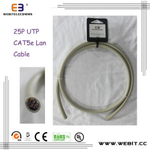 25p Cat5e UTP Installation Cable pictures & photos