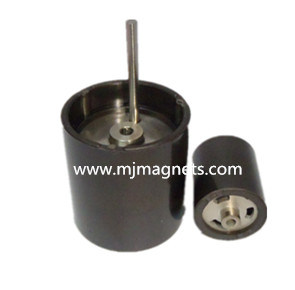 Plastic PPS Injection Bonded Neodymium Magnet for Motor