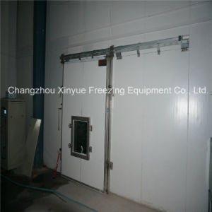 Vacuum Cold Storage Room with Air Regulating System Since 1982 pictures & photos