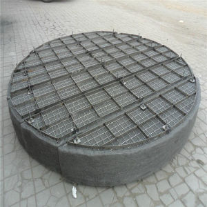 Gas-Liquid Stainless Steel Wire Mesh Demister/Demister Pad pictures & photos