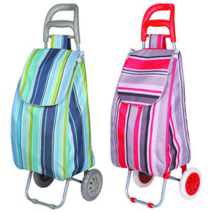 Eco-Friendly Vegetable Shopping Trolley Bag for Promotional (SP-543) pictures & photos
