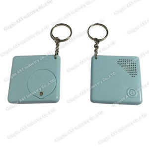 Sound Keychain, Voice Recorder Keychain, Musical Keychain pictures & photos