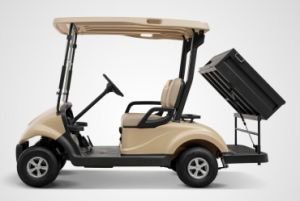 Best Electric Car 2 Seater with a Rear Cargo Box Utility Golf Carts