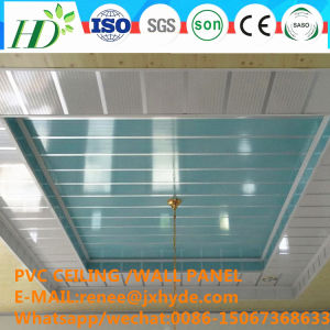 10/20/25/30/40/60 Cm Width Home Decoration PVC Panel Wall Panel (RN-137) pictures & photos