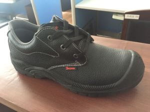Stock Safety Shoes with Steel Toe and Plate pictures & photos