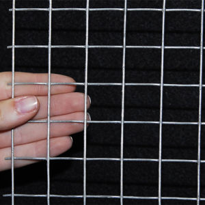 China Wholesale Galvanized Square Hole Wire Mesh (SWM) pictures & photos