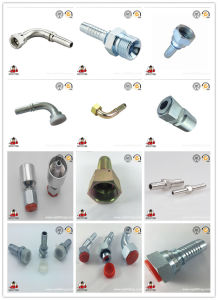Hydraulic Hose/ Hose Fitting/ Hydraulic Fitting pictures & photos