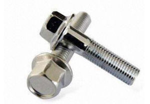 Stainless Steel Hex Flange Bolts DIN6921 pictures & photos