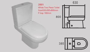P Trap 180mm Washdown Two Piece Toilet 2001 pictures & photos
