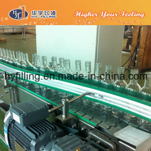 Glass Bottle Alcohol Wine Conveyor System pictures & photos