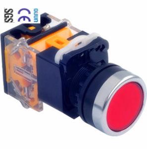 Industrial Push Button (QJ-LA39J-B) of PP PA66 Plastic