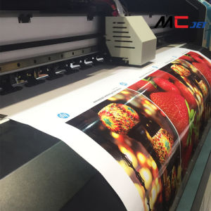10FT (3.2m) Large Format Eco-Solvent Printer with Epson Dx10 Printhead pictures & photos