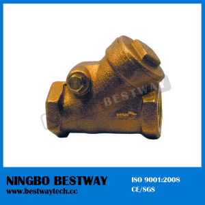 Economical Brass Swing Check Valve Stock (BW-C07) pictures & photos
