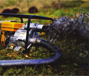 4-Stroke 2 inch Chemical Pump. pictures & photos