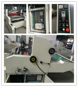 FM-1100 Window Water-Based Film Laminator pictures & photos