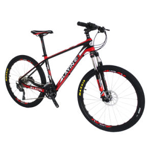 Cheap Sport Carbon Fiber Mountain Bike (OK900-3) pictures & photos