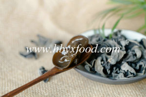 Black Fungus, Wild Mushroom, Dried Vegetable pictures & photos