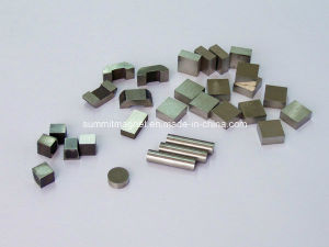 AlNiCo Magnets pictures & photos