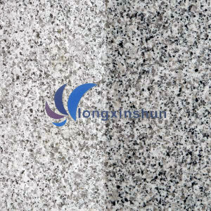 G640 Natural Customized White/Grey Stone Tile pictures & photos
