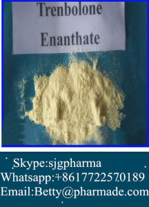 Pale Yellow Steroids Powder Trenbolone Enanthate for Muscle Growth pictures & photos