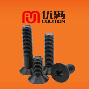 Countersunk Screw Bolt with Nut OEM Customized Size for Screws Bolts Nuts Fasteners