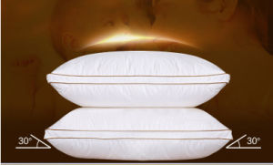 New Fashion Design White Goose Down Pillow