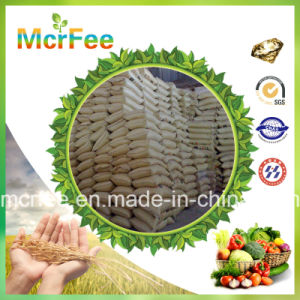 High Quality Fertilizer Potassium Nitrate for Agriculture pictures & photos