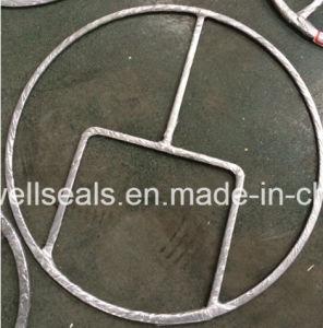 Heat Exchangers Double Jacket Gasket Djg (SUNWELL) pictures & photos