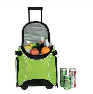 New & Trendy High Quality Trolley Cooler Bags pictures & photos