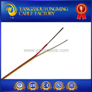 K Type Extension Compensation Thermocouple Stainless Steel Shield Wire pictures & photos