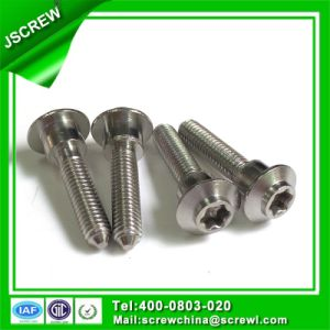 Washer Head Stainless Steel Torx Head Special Screw pictures & photos