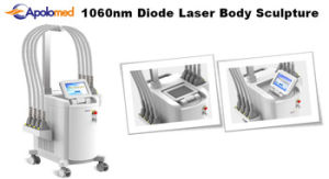 Non-Invasive Diode Laser Sculpture Body Shaper Slimming Machine for Permanent Fat Cells Reduction pictures & photos