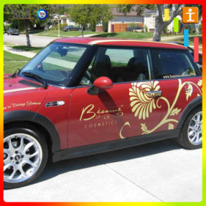 Self Adhesive Vinyl for Car Stick with Printing pictures & photos