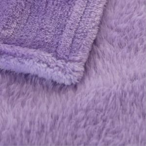 Home Collection Warm Soft Polyester Flannel Fleece Blanket China pictures & photos