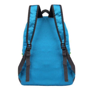 Backpack Polyester Student Travel Backpacks Fashion Bags Blue Rn1241 pictures & photos