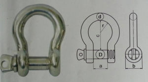 Stainless Steel Dee Shackle pictures & photos