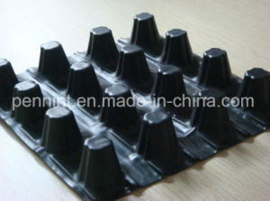 Best Selling Good Quality HDPE Dimple Drainage Board for Earthwork pictures & photos