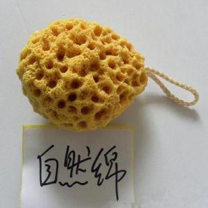 OEM Design Mini Exfoliating Bath Sponge pictures & photos