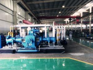 D Type CNG Compressor (D-5.33/0.56-250)