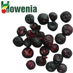2012 New Delicious Unique Freeze Dried Fruits Blueberry